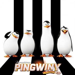 pingwiny zMadagaskaru