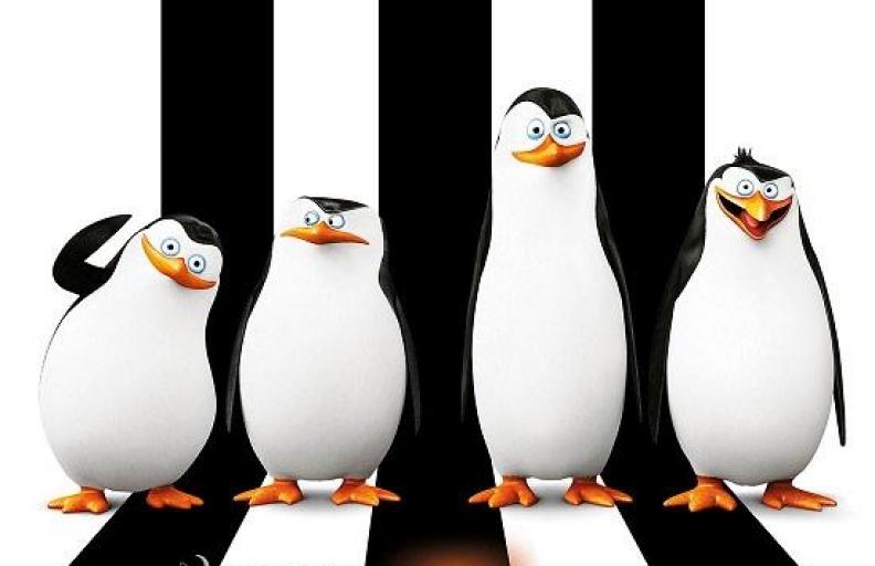 Pingwiny zMadagaskaru – od20.02